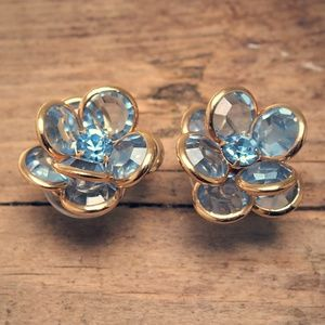 Stunning & Shimmering Blue Flower Crystal Earrings
